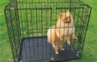 Где можно приобрести клетку для собаки от известного производителя?