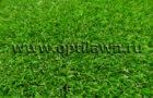 Искусственная трава для разных спортивных дисциплин